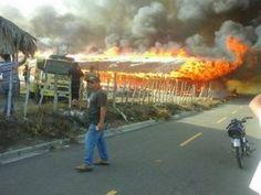 Fuego destruye granja de pollos en Santiago Rodríguez