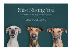 Nice Nosing You: For the Love of Life, Dogs and Photography
