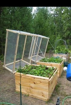 Smart Small Vegetable Garden Ideas On A Budget ~ 49 Smart Small Vegetable Garden Ideas On A Budget ~ Garden cover Small Vegetable Gardens, Small Gardens, Vegetable Gardening, Fairy Gardens, Home Vegetable Garden Design, Vegetable Ideas, Modern Gardens, Cottage Gardens, Organic Gardening