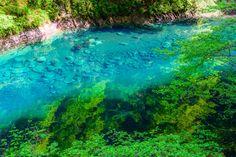 絶景と聞いて、なにを思い浮かべますか?オーロラ、アンコールワット、死海など世界にはさまざまな絶景がありますが、実はここ日本にもまさに絶景と言えるような風景があります。  美しすぎる絶景ブルー「ユーシン渓谷」  mizuyoさん(@mzylab)が投稿した写真 - 2015 10月 18 2:56午前 PDT...