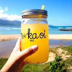 Wow Wow Lemonade: drinks, smoothies, and acai bowls
