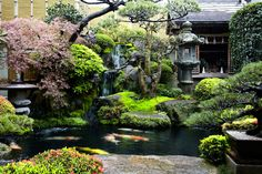 A Japanese water garden is considered a great work of art. One of the most important elements to a Japanese water garden is the noise level. Japanese Water Gardens, Japanese Garden Design, Japanese Landscape, Japanese Shop, Japanese House, Japanese Culture, Japanese Plants, Landscape Art, Asian Garden