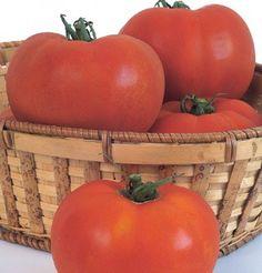Tomato Celebrity D733A (Red Slicer) 25 Seeds by David's Garden Seeds David's Garden Seeds http://www.amazon.com/dp/B00ET8VM5Q/ref=cm_sw_r_pi_dp_Uu3Utb0A6Z8HFJKA