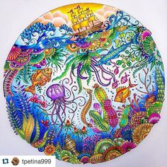 oceanoperdido Posts On Instagram | Vibbi