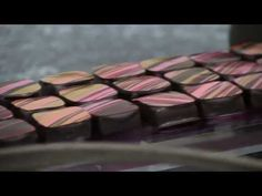 Savour School Guest Chef - Alexandre Bourdeaux | Technical Ganache - YouTube