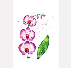 Orchid painting Original watercolor art Flower painting Purple violet fuchsia pink Tropical wall art Floral plant spring home decor by BluePalette on Etsy https://www.etsy.com/listing/189132050/orchid-painting-original-watercolor-art