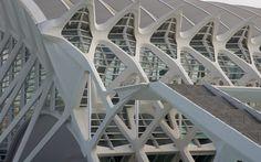 CIUDAD DE LAS ARTES. Walencja, Hiszpania Produkty: SGG STADIP PROTECT. #glass #architecture #desing #future #futuristc_architecture #glassisthefuture