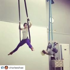 """404 Likes, 50 Comments - Holly Ann Jarvis (@hollyannjarvis) on Instagram: """"#Repost @charleeshae with @repostapp. ・・・ Playing with my lub lub @hollyannjarvis on the hammock!!…"""""""