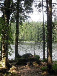 Großer Arbersee im Bayrischen Wald im Juli 2016