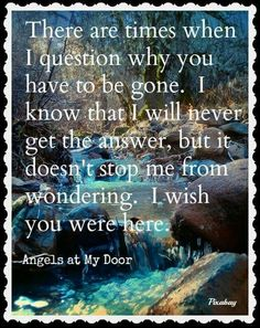 There are times when I question why you have to be gone, I know that I will never get the answer, but it doesn't stop me from wondering. i wish you were here.