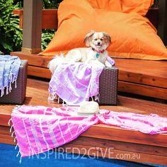 Fuschia turkish towels by the pool with Teddy. Jacaranda and Denim tt's
