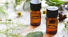 There are many ways to help detoxify your body from its daily toxic burden. Dr. Z reveals some of the best essential oils for detox.