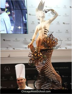 World Chocolate Masters 2013 - Italy's Davide Comaschi's gorgeous winning showpiece - The Chicago School of Mold Making #amazing #chocolateshowpiece