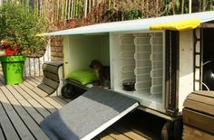 Y-town recycles old refrigerator into a dog house for adopted pup!
