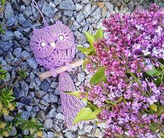 eMimino.cz - Detail fotky Detail, Plants, Plant, Planets