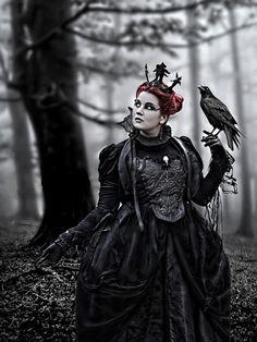 I really love birds - ya ever notice villians always have birds??  Hmmm...