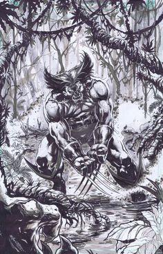 Wolverine by emilcabaltierra.deviantart.com on @deviantART