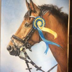 """Mi piace"": 56, commenti: 5 - Sara Kölsten (@pswesternart) su Instagram: """"Timon"" Watercolor 30x40cm  #portrait #equine #equineart  #equestrianart #fineart #watercolor…"""