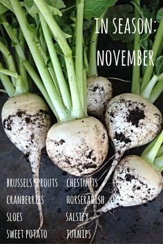Enjoy fruit and vegetables at their best and save money by eating seasonally. Here's what's in season in November.