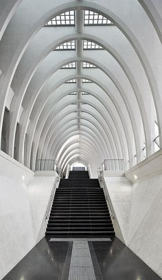 Santiago Calatrava  Liège Guillemins TGV Station  Liège, Belgium, photo by Michaël Jacobs