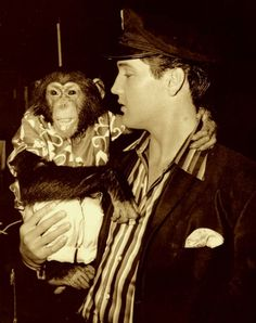 elvis & chimp
