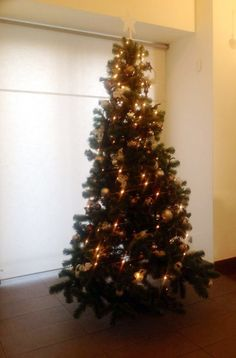 Glitter golden tree at the #ParkInn hotel in #Prague http://www.parkinn.com/hotel-prague