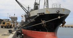 Officials say the vessel will be impounded and its crew of 21 North Koreans deported