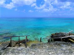 Taken At Chankanaab Park in Cozumel where the snorkeling area was easy to access. Cozumel Cruise, Cozumel Mexico, Caribbean Cruise, Places To Travel, Places To See, Snorkel, Visit Mexico, Travel Memories, Mexico Travel