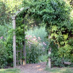 Secret Garden . publicdomainpictures.net