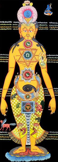 Thangka painting of the Chakraman yogi and the seven chakras system. Each chakra is represented by symbols associated with the area of the body and energy. Ancient Indian History, History Of India, Thangka Painting, Seven Chakras, Yoga Art, Kundalini Yoga, Chakra Healing, Tantra, Map Diagram