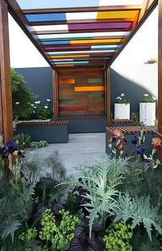 wooden pergola with coloured glass panels by sally tb