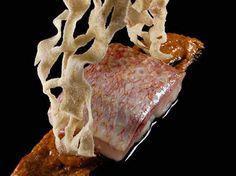 Biko, el paladar mexicano del mundo Foto: biko.com.mx