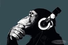 monkey headphones poster - Google Search