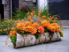 Get on the Plant Trend with 40 Beautiful Thanksgiving Flower Arrangement Ideas affordable https://pistoncars.com/get-plant-trend-40-beautiful-thanksgiving-flower-arrangement-ideas-13504