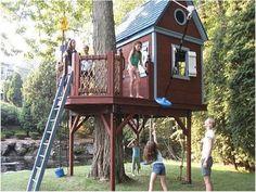 Casa na árvore  Demais nao é gente???