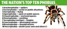meanings of phobias - Google Search