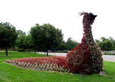 Michigan State University Children's Garden