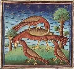 A medieval illumination showing the hoopoe, a symbol of a devoted child because its offspring were believed to rejuvenate it by pulling out its old feathers and licking the mist off its eyes; (Museum Meermanno MMW 10 B 25 Folio 32r). (Museum Meermanno via Medieval Bestiary)