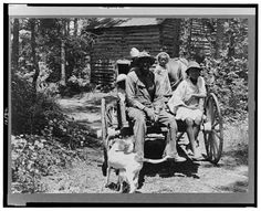 Colored sharecropper and his children about to leave home through the pine woods after their morning work at the tobacco farm stringing and putting up tobacco. Shoofly, Granville County, North Carolina. July 1939. Photo by Dorothea Lange.