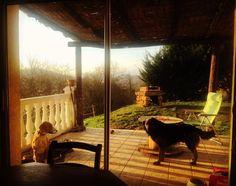 La douceur du foyer !  #colloc #chatillon #Page #cally #jack #sun