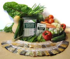 Vegetable Seeds Survival Pack