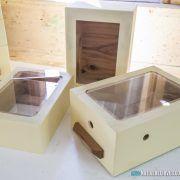 Budding Box – Native Bee Hives