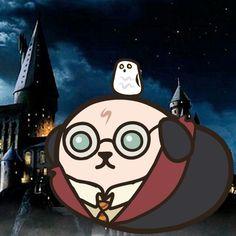 Harry Potter Mameshiba!