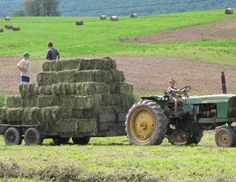 Watching my brother and his friend gather bales of hay from the field then stacking all the bales in the barn.