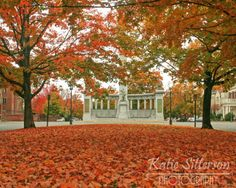 Fall Photo of Monument Avenue in Richmond Va. Photo by ImageAppeal, $15.00
