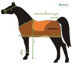 Jak velký je váš kůň?