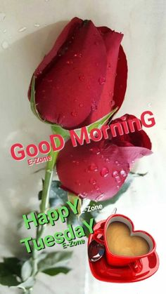 Good Morning Tuesday, Good Morning Happy, Good Morning Greetings, Happy Tuesday, Living Water, Scentsy, Quotes, Happy Brithday, Quotations