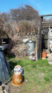 Fasters UrteHave: 20.4.17 flytning af kompost projekt