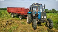 Russia Agro: Belarus. Hay.
