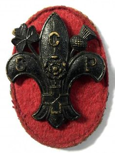 Boy Scout Badges, Girl Guides, Boy Scouts, Belts, Brooch, Fleur De Lis, Camping, Scouting, Brooches